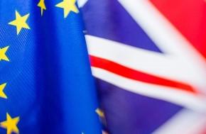 AS & A Level Politics - The EU Referendum 2016